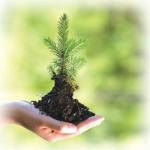 حسابداری مدیریت محیط زیست